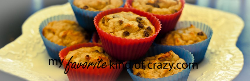 Gluten Free Cinnamon Chocolate Chip Muffins