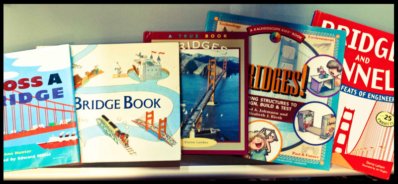 Great Books for using with the bridge science project (CC Cycle 2 Weeks 20-21)