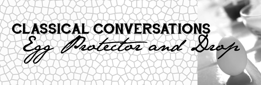 Classical Conversations Science Egg Protector Egg Drop